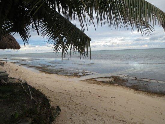 Sin Duda Villas: dreamy beach