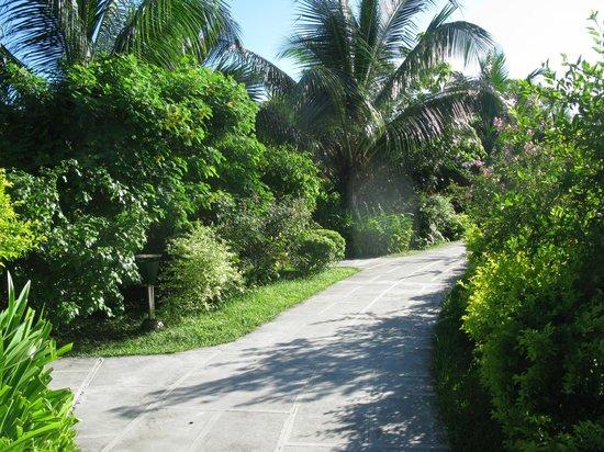 La Digue Island Lodge : Der Weg durch die Anlage