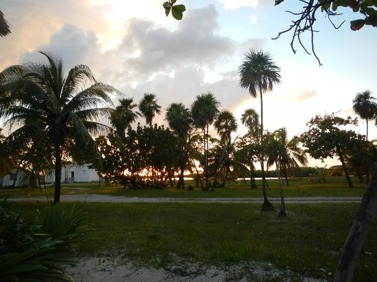 Blackbird Caye Resort: great view