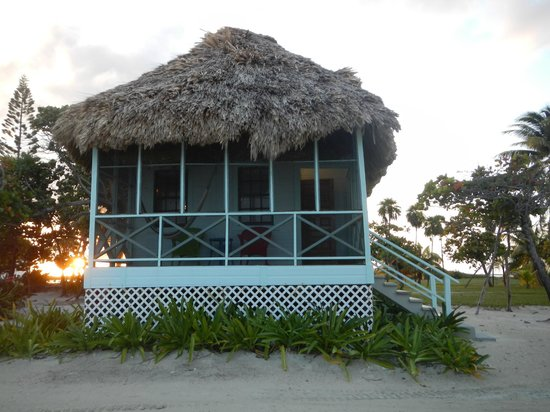 Blackbird Caye Resort: Cabana