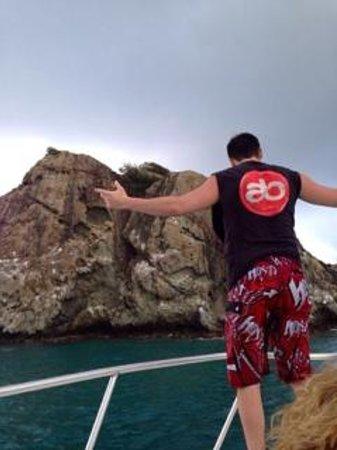 Octopus Diving: Creole Rock