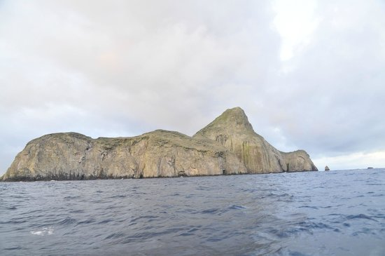 Malpelo Fauna and Flora Sanctuary: Malpelo