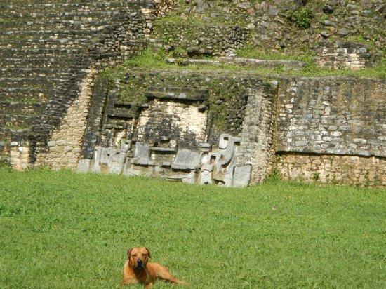 Belize Jungle Dome: :)