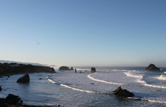 Bandon Beach Motel : View behind motel