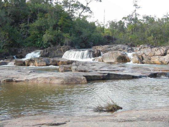 Belize Jungle Dome: Rio on Pools