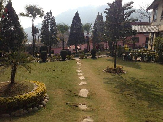 Himalayan Yoga Academy and Retreat: The garden