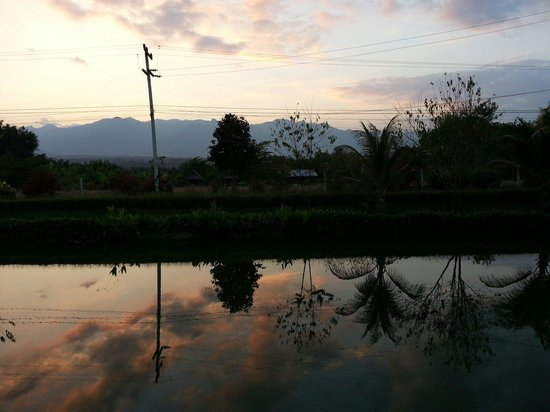 Pura Vida Resort: beautiful pond view...