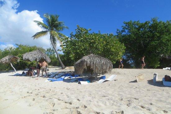 Caribe Club Princess Beach Resort & Spa: Calalina Island trip