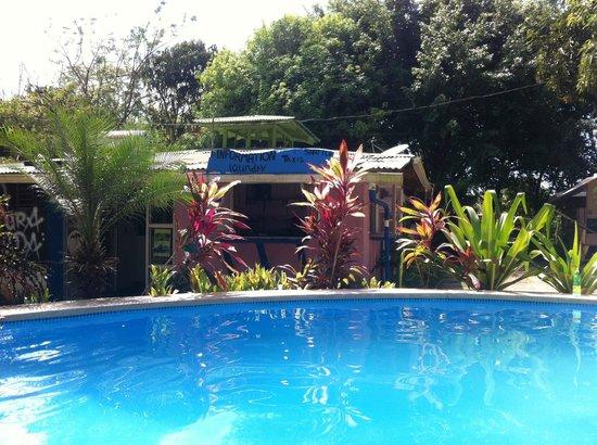 Pura Vida MiniHostel - Santa Teresa : Bord de la piscine, réception