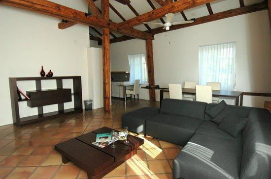 Seestrasse Apartments Drei Konige: Living Area Apartment