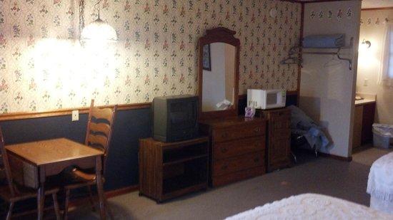 Homestead Inn Motel: TV, dresser, microwave, and fridge