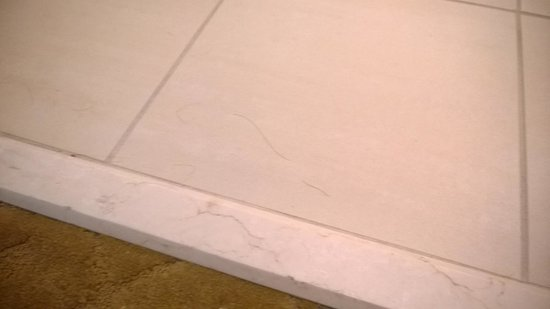 Signature at MGM Grand : hairs on bathroom tile