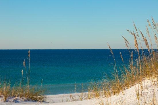 Emerald Coast Convention Center: Sugar-White Sand & Emerald-Green Water are our signature.