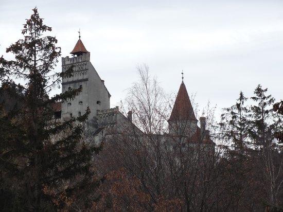 Pensiunea Trattoria al Gallo : вид на Замок Дракулы из окна нашего номера!