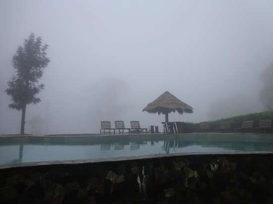 98 Acres Resort: Pool area....
