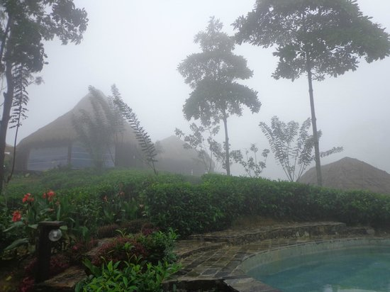 98 Acres Resort: Hotel garden....