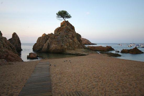 Tossa Center Hotel: Первый (если смотреть на море слева-направо) пляж с бухточкой для детского купания