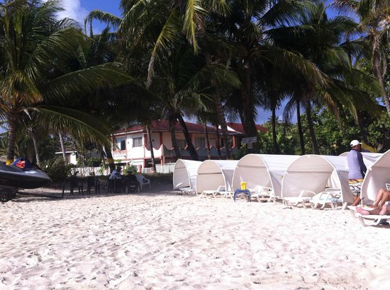 Sol Caribe Campo: Cub de Playa
