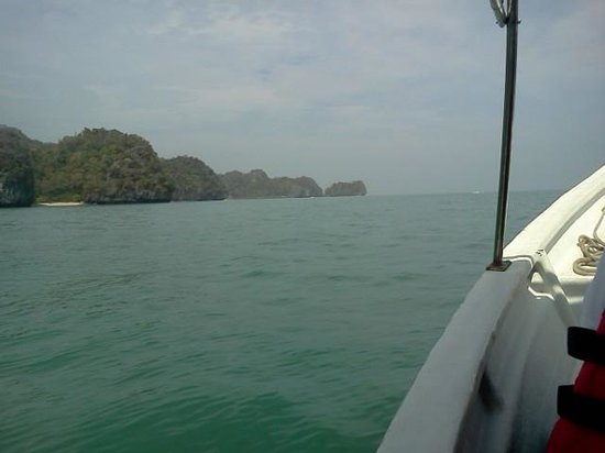 Tanjung Rhu Resort: Mangrove Tour