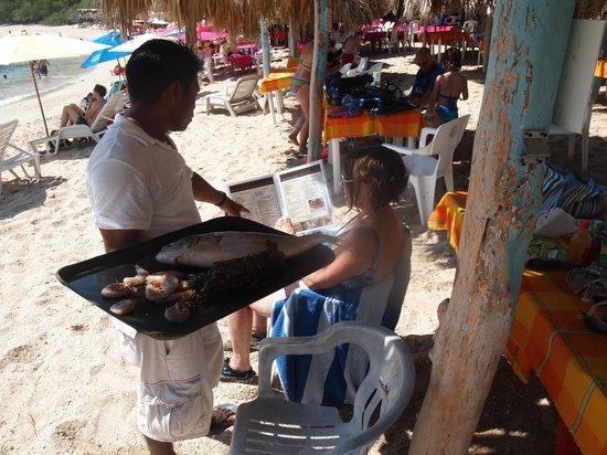 Ixtapa Island Escape: FRESH fish