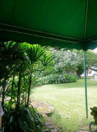 Park Eden Bed & Beakfast: Área de desayunos
