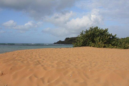 Батуми пляжи Пляж в Батуми фото Море в Батуми