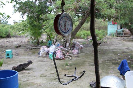 Yalahau Lagoon: Basura cerca de la cocina