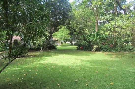 Park Eden Bed & Beakfast: Grounds