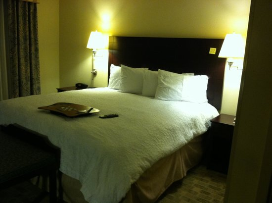 Hampton Inn & Suites Atlanta Airport West/Camp Creek Pkwy: Our room