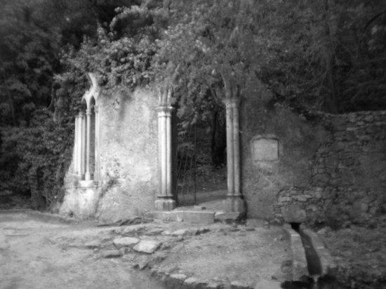 Hotel Quinta das Lagrimas : Portal