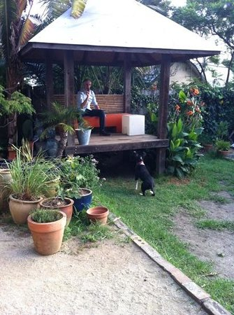 TARA Guest House: playing with Oscar in the garden