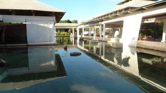 Catalonia Bavaro Beach, Casino & Golf Resort: bassin hôtel