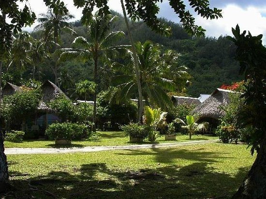 Hotel Hibiscus : Hotel Grounds