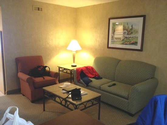 Embassy Suites by Hilton Philadelphia-Valley Forge: Adequate sofabed