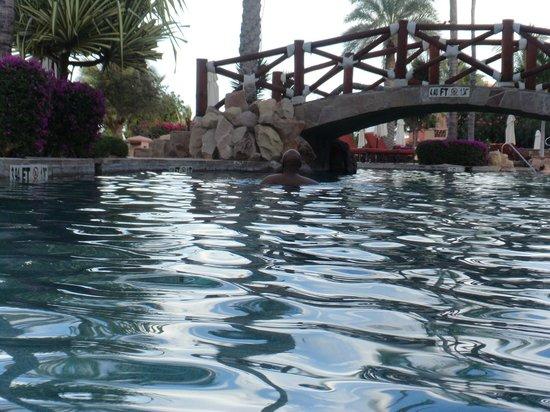 Sheraton Grand Los Cabos Hacienda Del Mar: Swim up bar