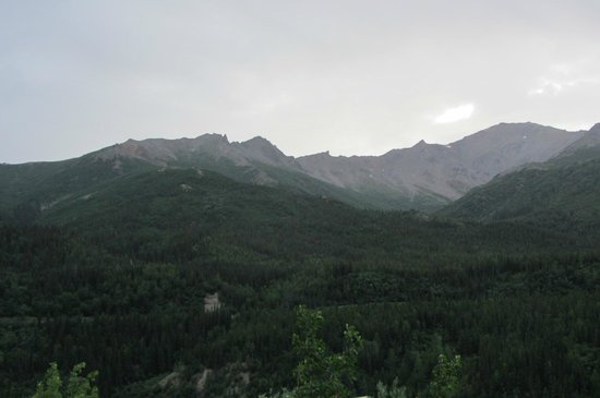 Denali Park Village : View from our room/ deck