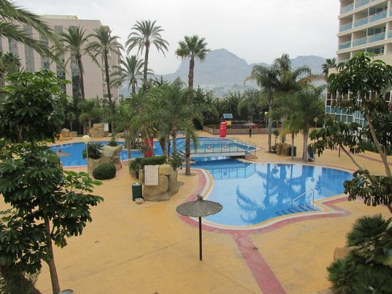 Hotel Flamingo Oasis: Main Outdoor Pool