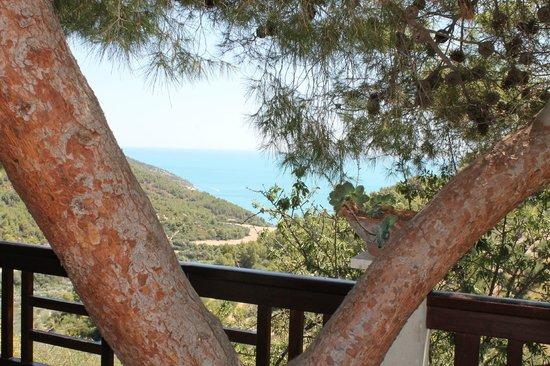 Rifugio Petina: ...panorama