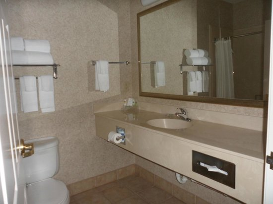Country Inn & Suites By Carlson, Round Rock: Guest bathroom
