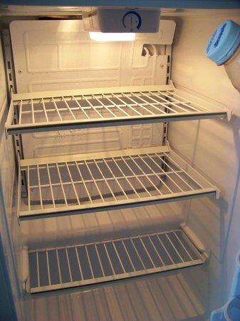 Disney's Grand Floridian Resort & Spa: Refrigerator.  Where's the freezer?