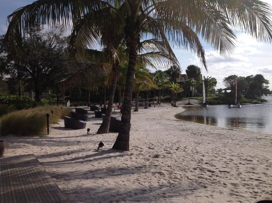 Club Med Sandpiper Bay : Small sandy beach by the river