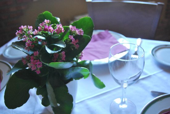 La Encina Centenaria: Detalle decorativo Restaurante Las Raices de la Encina