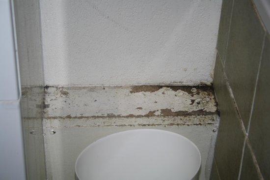 Mona Lisa Les Toits du Devoluy : dans la salle de bain, endroit à côté de la baignoire où la peinture se décolle !! HONTEUX !