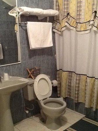 Hostal Ovejero: baño amplio