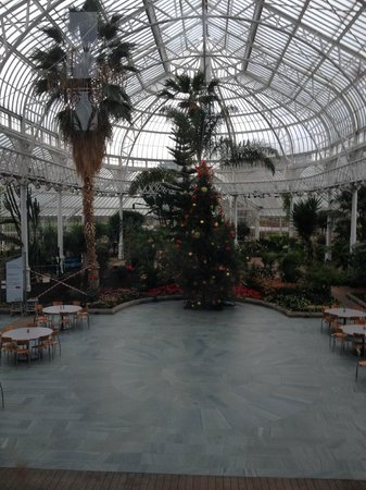 People's Palace and Winter Gardens: winter garden