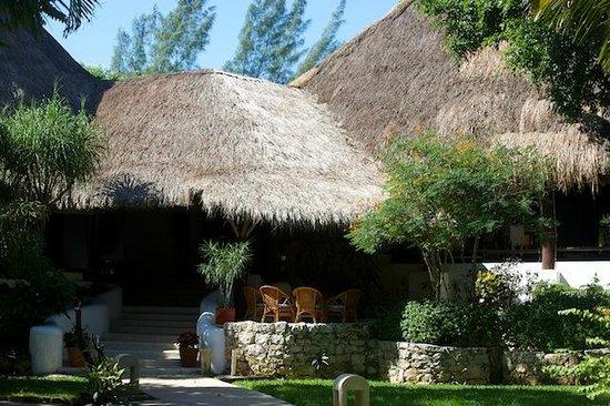 Riviera Maya Suites: Restaurant im Garten