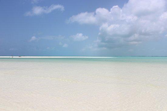 Playa Paraiso: paraiso