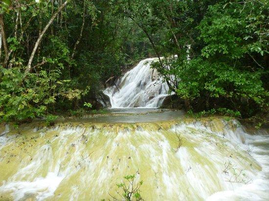 Martz Farm Treehouses and Cabanas Ltd.: Waterfall (boat ride)