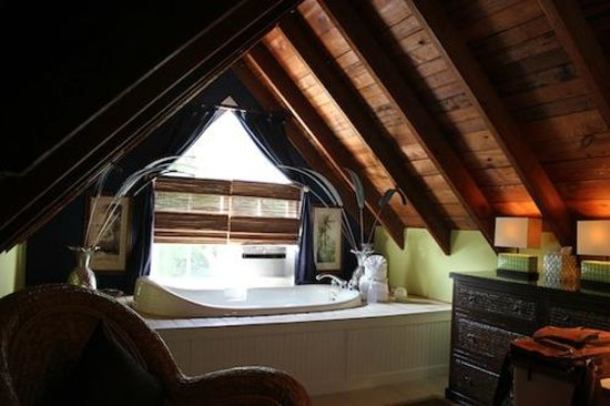 The Mermaid & The Alligator: Jacuzzi Tub in Tree Top Suite