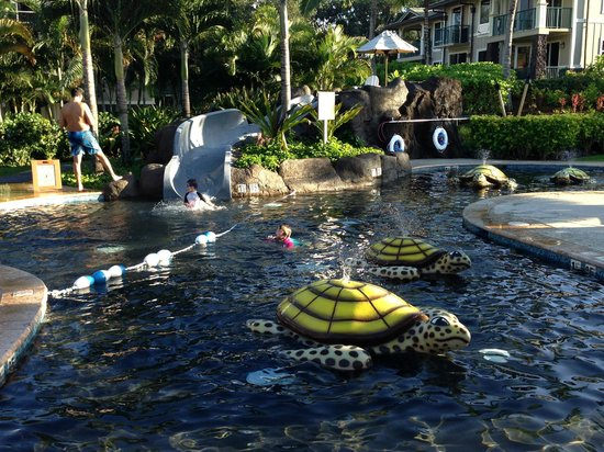 Westin Princeville Ocean Resort Villas : Children's Pool